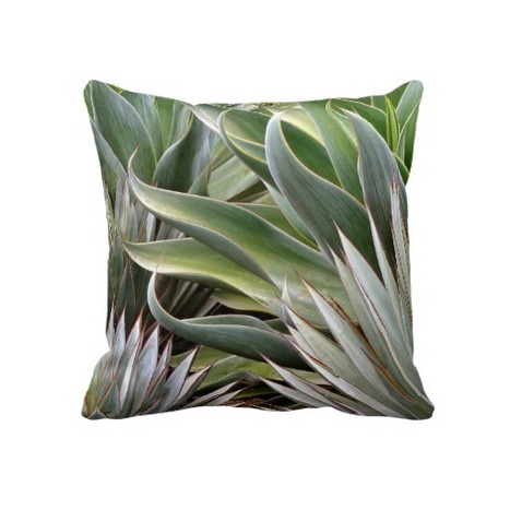 Agave pillow by Debra Lee Baldwin from Zazzle.com | Annie Haven | Haven Brand | Scoop.it