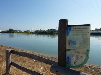 Le long du fleuve, la ViaRhôna se glisse entre nature et industries | ViaRhôna à vélo, du Léman à la Méditérranée | Scoop.it