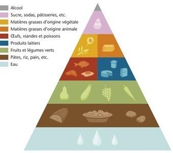 Comment représente-t-on l'équilibre alimentaire ? - EurekaSante.fr par VIDAL | location-landes-mimizan-plage seniors | Scoop.it
