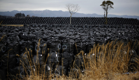 600 tons of melted radioactive Fukushima fuel still not found, clean-up chief reveals | Fukushima | Scoop.it