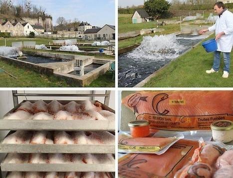 La Pisciculture de l'Ouette transforme et fume le poisson | 3A : Actualités Aquacoles & Aquaponiques | Scoop.it