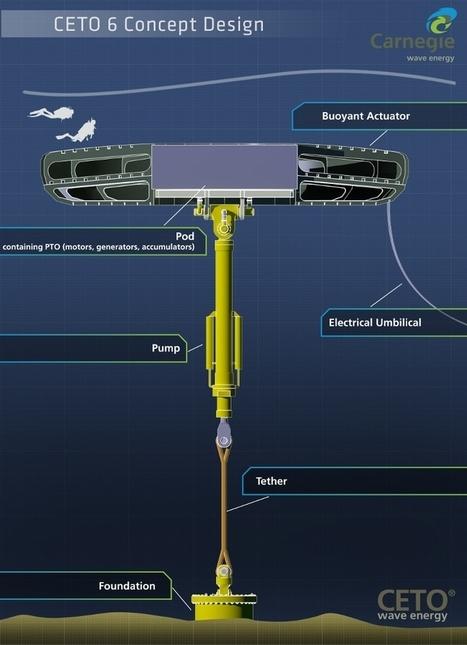 Houlomoteur : une nouvelle étape franchie par le projet CETO - mer-veille.com   Energies Actus   Scoop.it