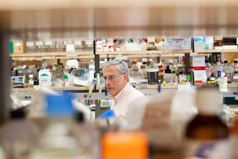 DNA Project Aims to Make Public a Company's Data on Cancer Genes   Biopathology   Scoop.it