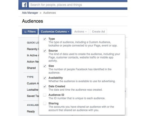 Facebook Revamps Audiences in Ads Manager | MarketingHits | Scoop.it