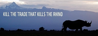 La campagne KILL THE TRADE du WWF et de TRAFFIC est lancée   BIODIVERSITÉ - WWF   Scoop.it