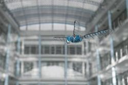 Festo lâche une libellule… de 70 cm d'envergure | Tendances : technologie | Scoop.it