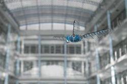 Festo lâche une libellule… de 70 cm d'envergure | Tendances : technologie | Scoop.it