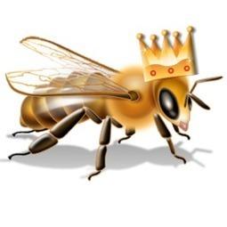 Women as Mentors: Squashing the Queen Bee Myth | Leadership4Women | Scoop.it