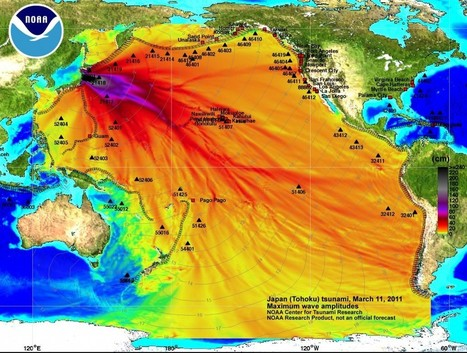 Fukushima Nuclear Crisis Update for November 12 to November 14, 2013   earthmergency   Scoop.it
