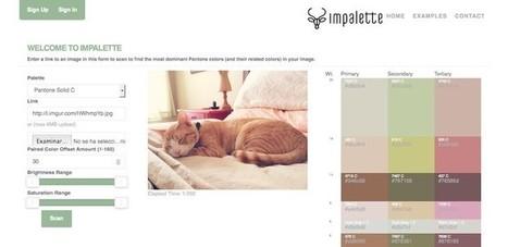Impalette, herramienta para escanear imágenes y encontrar los colores Pantone dominantes | Tecnologia, Robotica y algo mas | Scoop.it