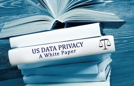 Data privacy and data protection: US law and legislation white paper | Identidad Digital | Scoop.it