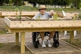 Zahrady léčí. Lipka učí zahradní terapii   Miesta Premeny   Scoop.it