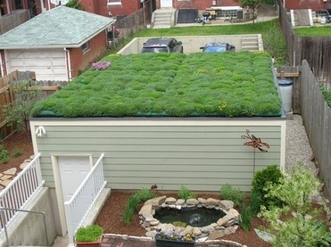 How to Grow Food on the Roof | Green Home Design | Vertical Farm - Food Factory | Scoop.it