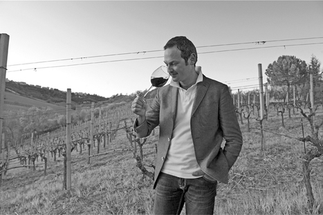 Artisans of  Wine Le Marche: Vini Dianetti, Carassai | Wines and People | Scoop.it