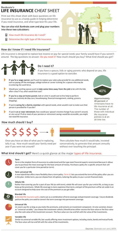Infographic: Life Insurance Cheat Sheet | itsyourbiz | Scoop.it