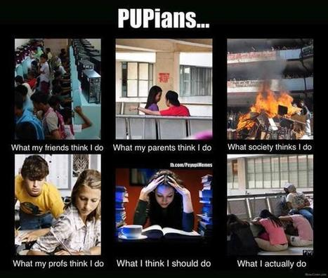 Pupians | What I really do | Scoop.it