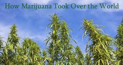 How Marijuana took over the World   FarOutRadio with Scott Teeters   Scoop.it