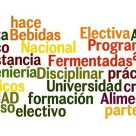 Bebidas Fermentadas_descripcion corta_wordle.jpg | Bebidas  Fermentadas | Scoop.it