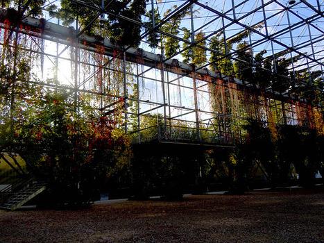 The Nomad.: MFO Park: urban jungle, botanical garden, public space. | The Nomad | Scoop.it