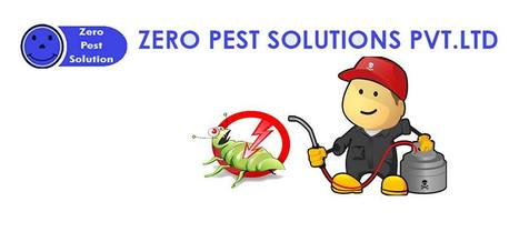 Pest Control- An affordable service which saves the time and money. | Zero Pest Solution | Scoop.it