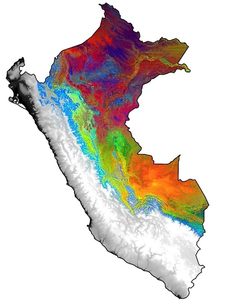'Rule-breaker' forests in Andes and Amazon revealed by remote spectral sensing | Jeff Morris | Scoop.it