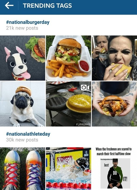 How to Build a Loyal Following at Instagram for Small Business | My Social Media Guide | Scoop.it
