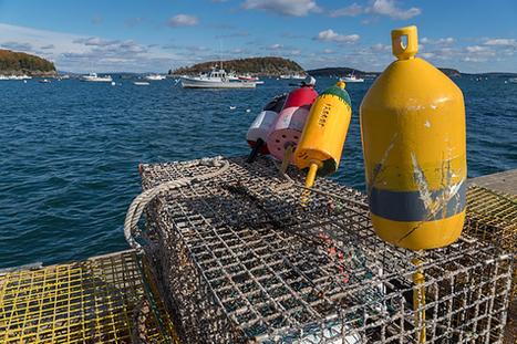 Capturing Bangor Maine | Photography | Scoop.it