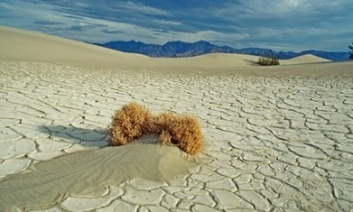 California Drought -- Worst In Recorded History