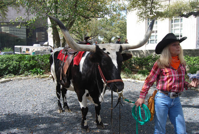 Only in Texas: Rodeo Round Up for the Lunch Hour | mexicanismos | Scoop.it