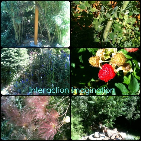 Interaction Imagination: A visit to Boulder Sunflower Preschool. | Early Learning | Scoop.it