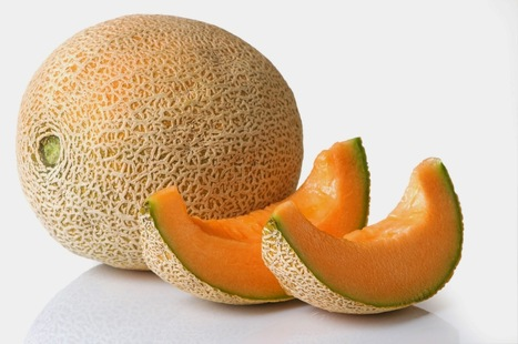 Manfaat Buah Melon untuk Kesehatan Tubuh   Situs Buahan   Situs Buahan   Scoop.it