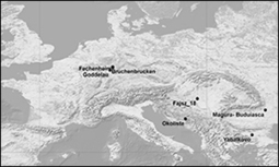 Antiquity Vol 87:338, 2013 pp 1073-1085 - Giedre Motuzaite-Matuzeviciute and others - The early chronology of broomcorn millet (Panicum miliaceum) in Europe | World Neolithic | Scoop.it