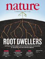 Nature News Blog: Golden sweet potato shows success : Nature News Blog | The Barley Mow | Scoop.it