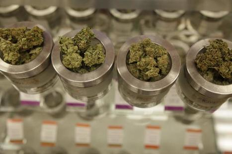 Editorial: Finally legalize medical marijuana   Special Needs Issues   Scoop.it