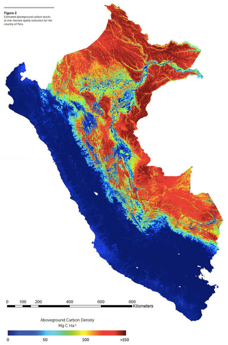 Stunning high-resolution map reveals secrets of Peru's forests | Peruvian Amazon | Scoop.it