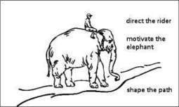How to ride an elephant - Kristine Woolsey Studio | Business change | Scoop.it