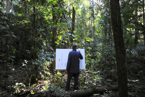 « L'homme ne pourrait pas vivre sans arbres » | Kaizen magazine | Urgence écologique | Scoop.it