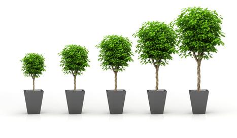 AKUITEO réalise une nouvelle croissance en 2014 - Akuiteo | AKUITEO | Scoop.it