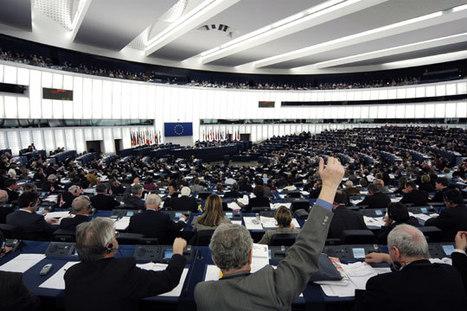 10 medidas para el sector hortofrutícola, propuestas por los europarlamentarios | Sector hortofrutícola | Scoop.it