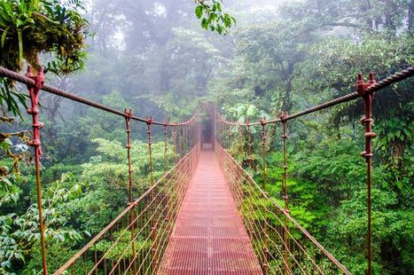 7 things Costa Rica is doing right | Biodiversity protection | Scoop.it