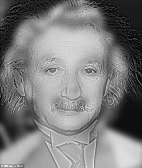 What face do YOU see, Einstein or Marilyn? Optical illusion could reveal if ... - Daily Mail | Optical Illusions | Scoop.it