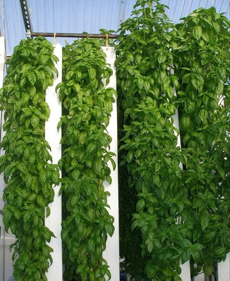 ZipGrow Towers - True Vertical Growing Systems   Urban- city- vertical farming - Green cities   Scoop.it