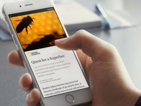 Are Facebook's Instant Articles Actually Beneficial to Publishers? | All About Facebook | Scoop.it