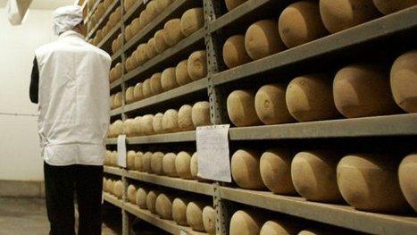 La mimolette, un fromage originaire du Nord ! | The Voice of Cheese | Scoop.it