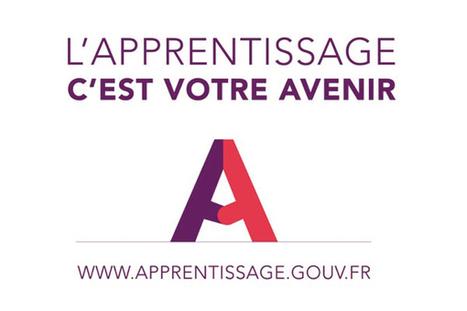 L'apprentissage, une voie d'avenir | La cité des métiers du 94, ses partenaires, son réseau et le programme FSE Open Codex | Scoop.it