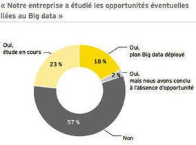 Big data : beaucoup de buzz, mais encore bien peu de cas réels | Marketing Numérique | Scoop.it