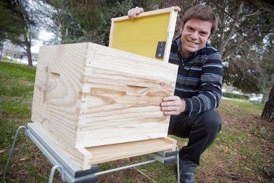 Depuis Labège, Beeguard met l'internet des objets au service du miel et des abeilles   territoires durables   Scoop.it