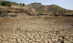 #India #drought 'affecting 330 million people' after two weak monsoons #climate | Messenger for mother Earth | Scoop.it