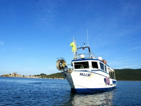 Experience the sea: fishing tourism in the Maremma - Tuscan ...   scansano   maremma   europe   Scoop.it