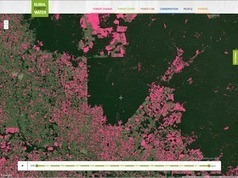 Google Lat Long: Monitoring the World's Forests with Global Forest Watch | Theme 3: Resources & the Environment | Scoop.it